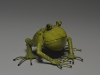 frog-low-res