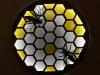 Honeybee hive