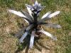 bromeliad2