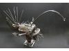 hairy anglerfish