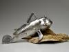 jason-lydic-mudskipper-low-res